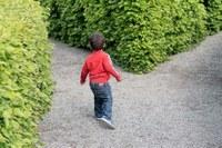 # Pra pensar - Ensina a criança o caminho...