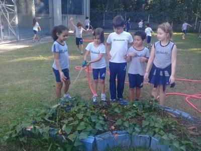 Atividade sobre cultura indígena leva alunos a leituras, músicas e colheita em horta