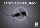Colégio Metodista entra na luta contra o mosquito Aedes aegypti