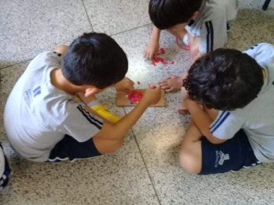 Projeto Siemens: estudantes simulam processo de cicatrização de ferimentos
