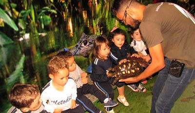 Colégio recebe exposições itinerantes sobre Educação Ambiental