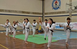 Alunos coreanos visitam e apresentam arte marcial aos estudantes do Colégio