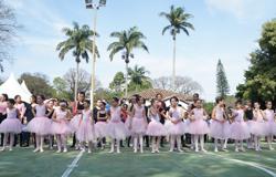 Festa da Família reúne alunos, pais e docentes no próximo dia 20
