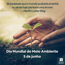 Dia Mundial do Meio Ambiente - 2021