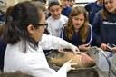 Alunos do 7º ano participam de aula prática de Biologia