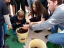 Alunos do Ensino Médio e da Educação Infantil participam de atividade integrada na horta