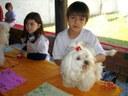 Dia do Bichinho no União ensina a valorizar os animais